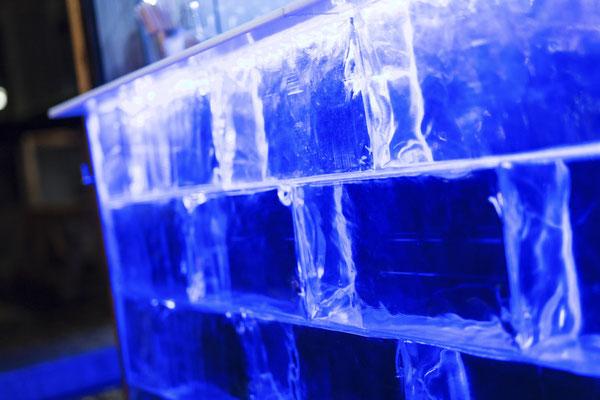 Eisbar mit GEO 282 (Plexible Solutions)
