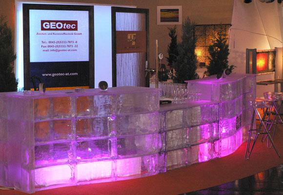 Eisbar aus GEO Brick by GEOtec