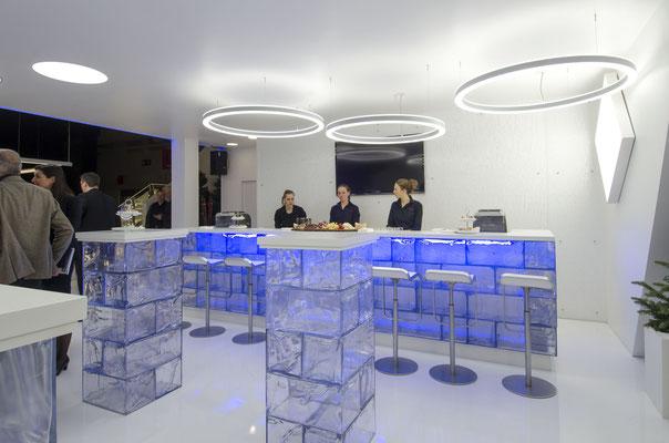 Eisbar Installation aus GEO282 (Planlicht)