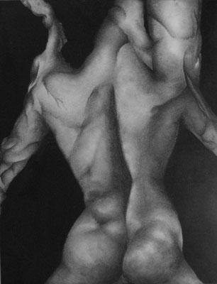Fusain, 65cm x 50 cm