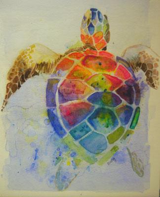 Schildpad. Mieke Kok