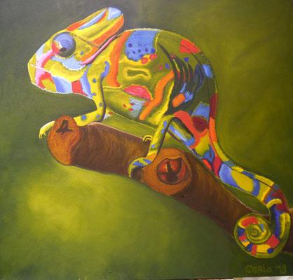 Kameleon, Carla van Haestrecht