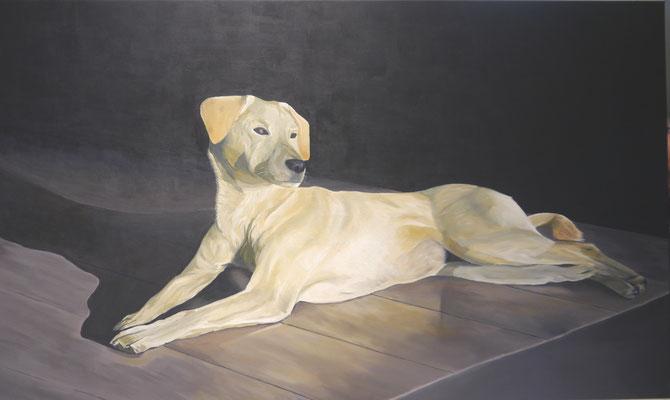 Hond . Alina v.d.Hulst
