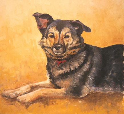 Hond, Ellen Rosmalen