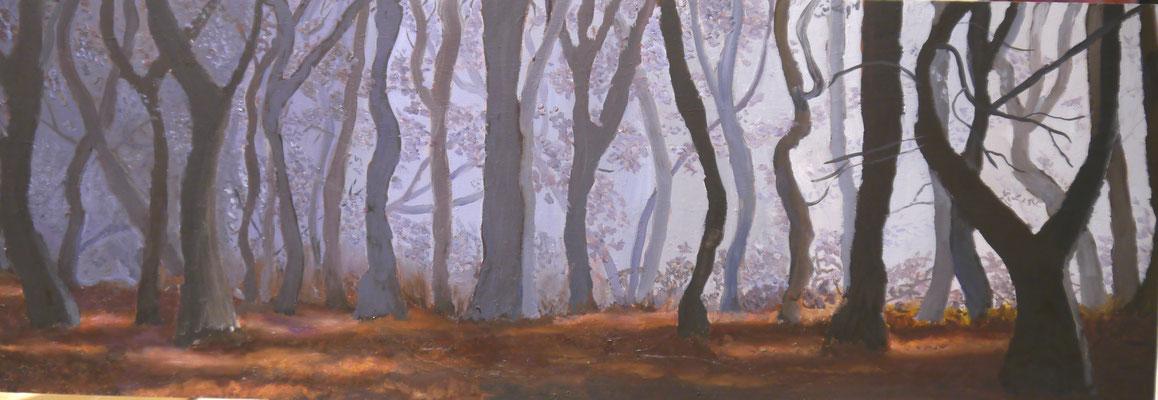 Mistig woud, Marije Zwiers