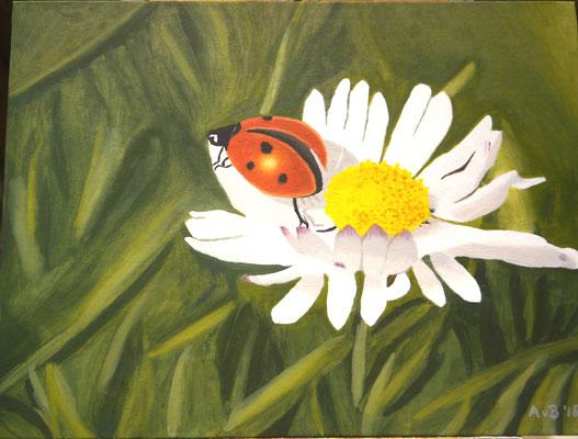 Natuur, Agnes van Berkel