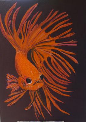 Vis, Maria Treuren