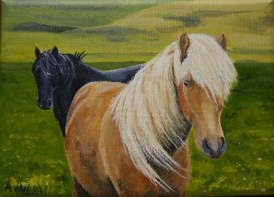 Paarden, Alina v.d Hulst