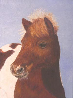 Pony, Yvonne Bruurmij