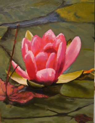 Lotus, Marijke van Aalst