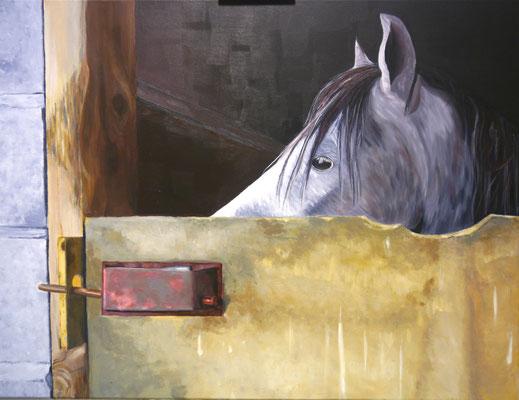 Paardenstal, Alina v.d.Hulst