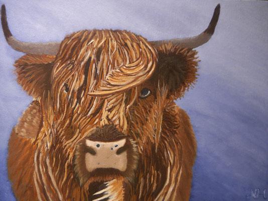 Bull, Neeske van der Hoorn