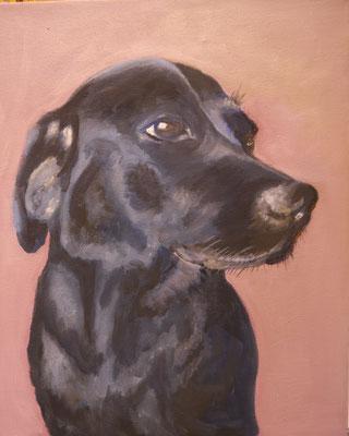 Hond, Gonnie Rijnbeek