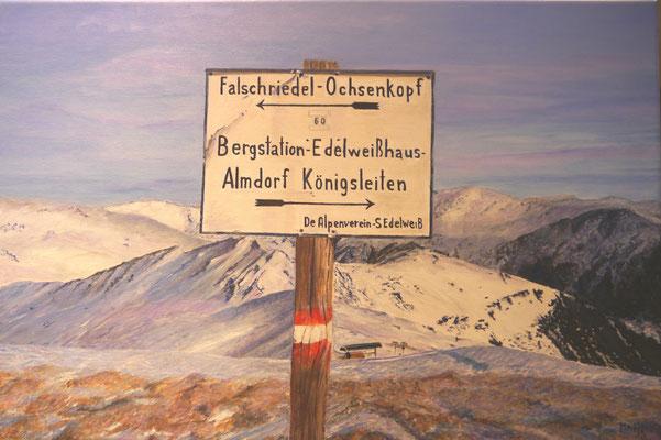 Van de ene naar de andere Alp, Manja den Dekker
