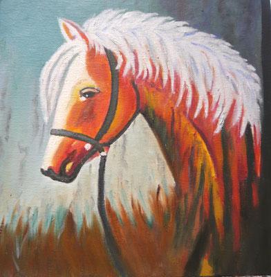 Paardje, Riet Visser
