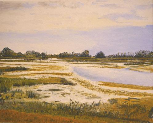 Biesbosch, Jan Kok