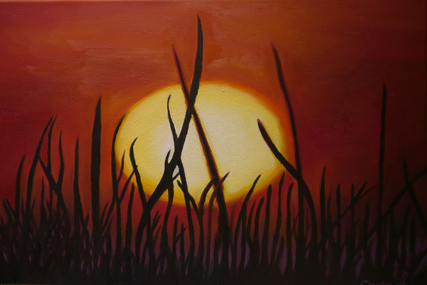 Sunset, Carla Haestrecht