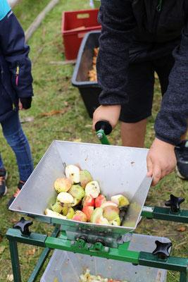 Apfelpressen beim Apfelfest 2017