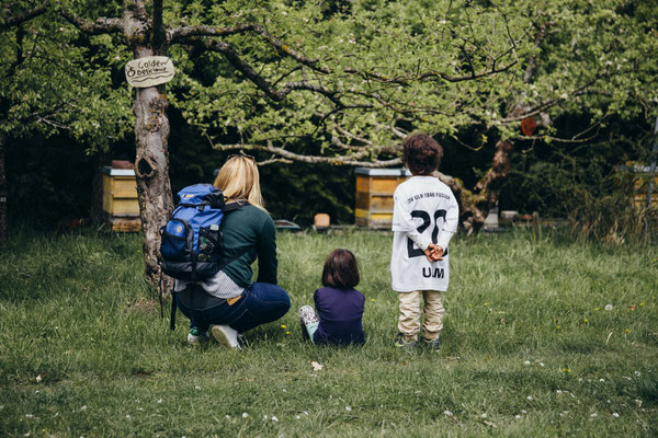 Bienen beobachten beim Blütenfest 2017