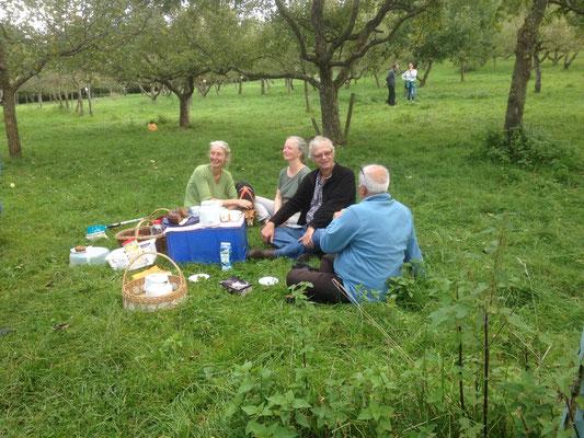 Ein Picknick im Hermannsgarten
