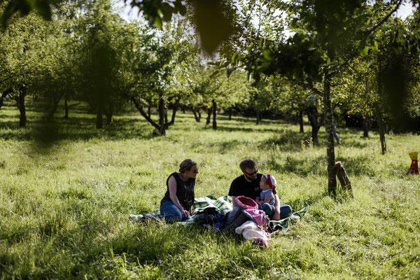 Sommerliches Picknick im Hermannsgarten