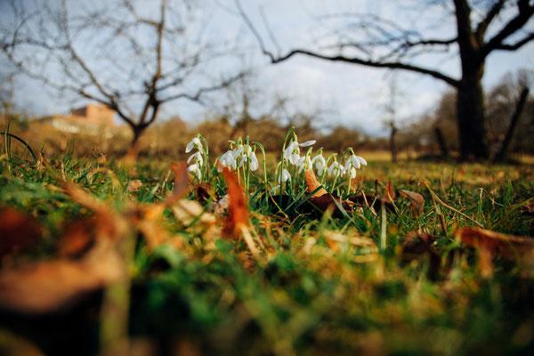 Der Frühling ist da, juhu!