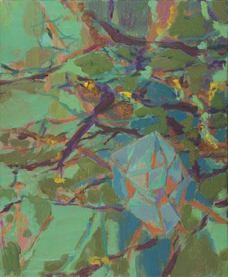 Extra Facet, 2009, Öl auf Leinwand, 60 x 50 cm