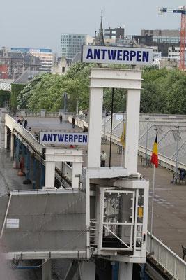 Cruise Terminal S21 Antwerpen/Belgien