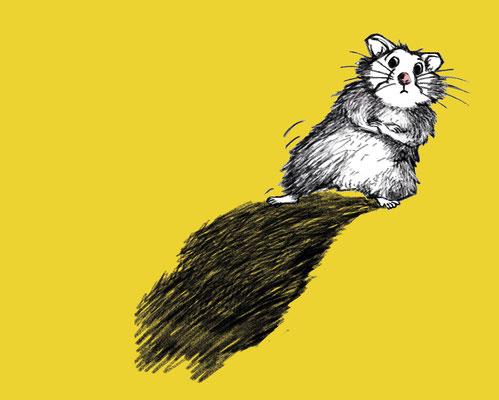 Coverillustration zu Friedbert Stohner »Ich bin hier bloß der Hamster« | hanser Verlag