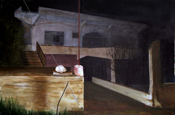House, 195 x 130 cm, Acrylic on canvas, 2009
