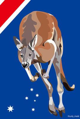Australia:Red kangaroo