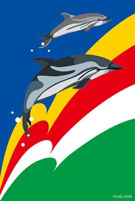 Seychelles:Striped dolphin