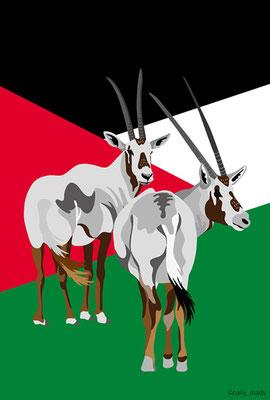 Jordan:Arabian Oryx