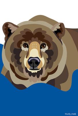Finland:Brown bear