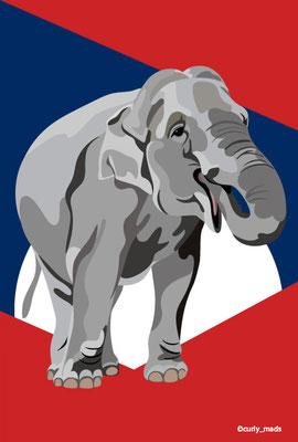 Laos:Asian elephant