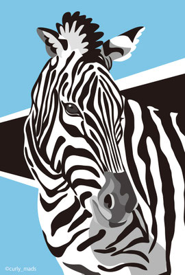 Botswana:Zebra