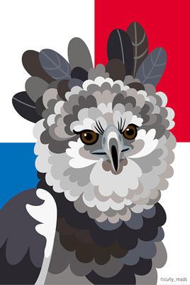 Panama:Harpy eagle