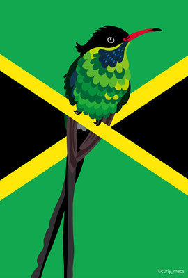 Jamaica :Red-billed streamertail