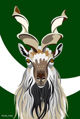 Pakistan:Markhor