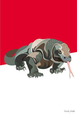 Indonesia:Komodo dragon
