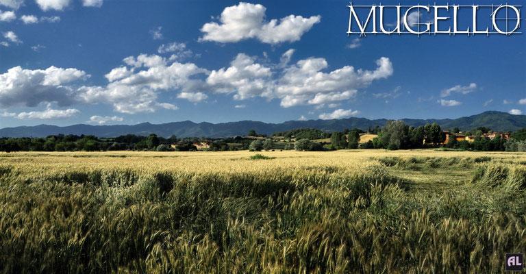 Paesaggio nei pressi della pista ecoturistica (Borgo San Lorenzo)