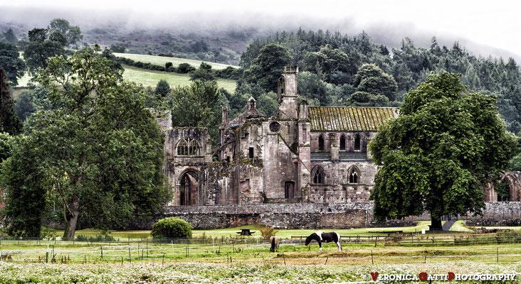 Scozia - Abbazia di Melrose