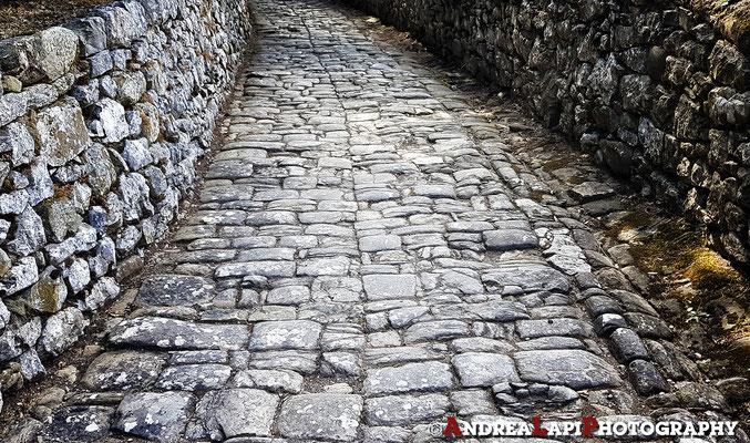 Verso il Castello di Brolio