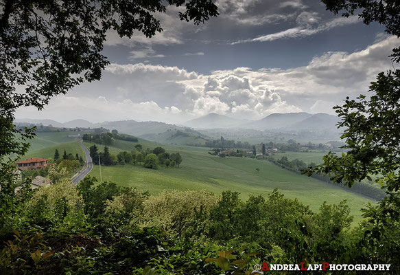 Paesaggio nei dintorni di Torrechiara