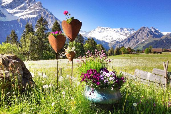 Freie Sicht auf die schöne Adelbodner Bergwelt.<br>© Juerg Hostettler
