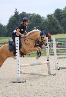 Der X-Cross Dressage als Springsattel in Aktion