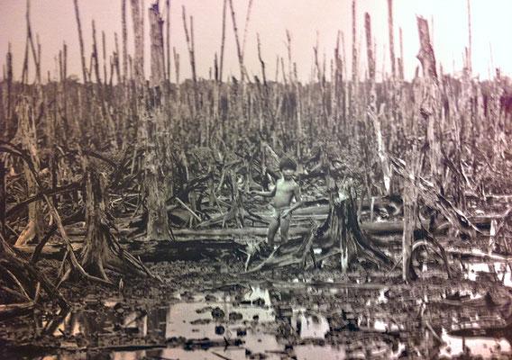 Mit Herbiziden niedergesprayter Wald in Südvietnam (Foto War Remnants Museum Ho Chi Minh Stadt).