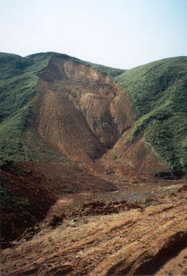 Niedergespritzte Wälder begünstigen Erosionen (Foto Hatfield Consultants Ltd)