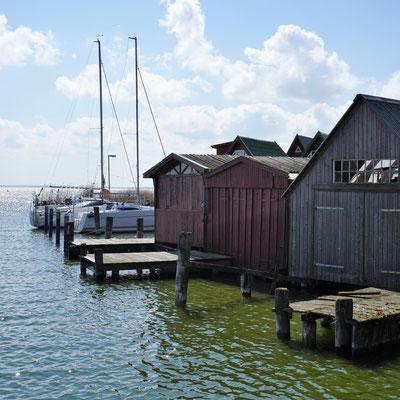 Zwischen Meer und Bodden . Fischland, Darß, Zingst, Teil I