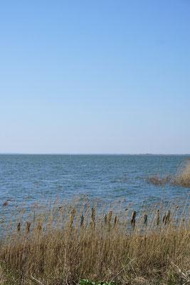 Zwischen Meer und Bodden . Fischland Darß, Zingst...NIE GENUG!